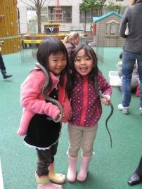 petting zoo 8