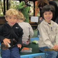 petting zoo 16